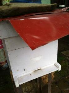 Een van de bijenkassen